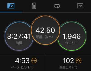 マラソンでサブ3.5達成(ガーミン画像)